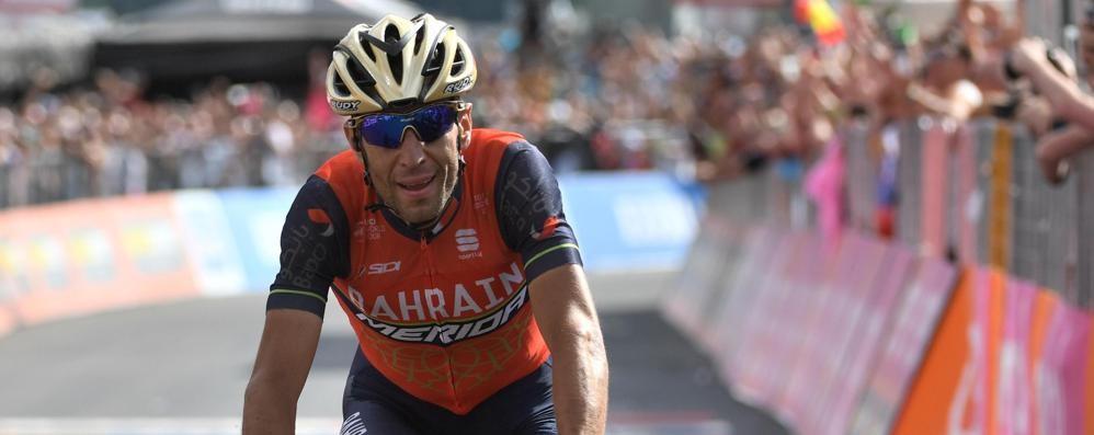 Giro d'Italia, capolavoro di Nibali Vince a Bormio e riapre la corsa rosa