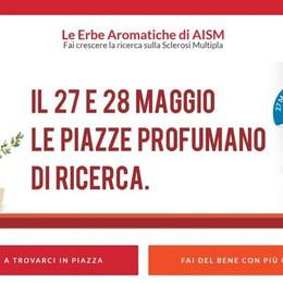 Erbe aromatiche in piazza a Bergamo per la ricerca contro la sclerosi multipla