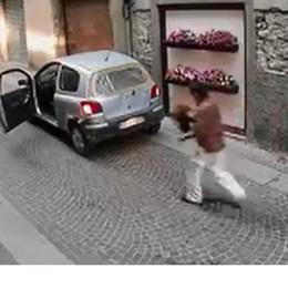 Il ladro di fiori perde i petali e Facebook lo incastra - Video