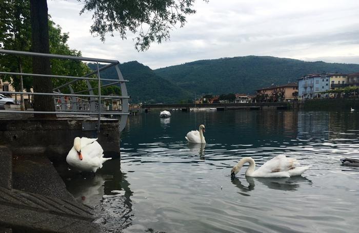 Le foto del lago, è cresciuto il livello sul Sebino
