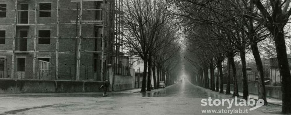 Via 24 maggio, anni Cinquanta Uno scatto dal quartiere in costruzione