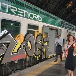 Imbrattato treno nuovo di zecca I vandali costano un milione l'anno