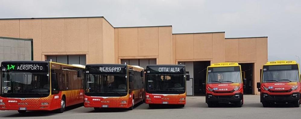 Atb, 5 nuovi autobus a gasolio E la linea C (elettrica) parte a gennaio