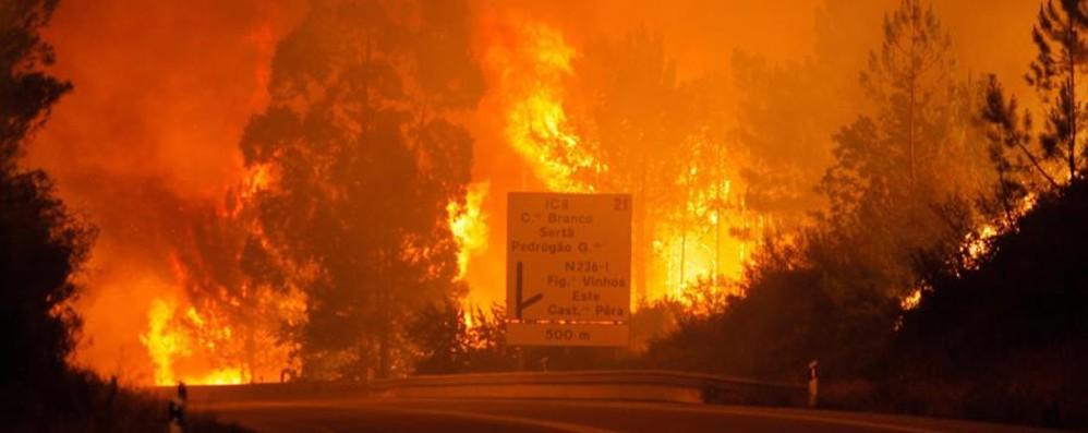 Dopo il caso Portogallo, allerta incendi «Non gettate mozziconi dalle auto»