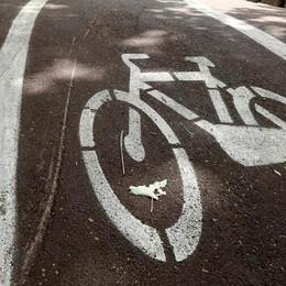 «Altro che nuove piste ciclabili Pensiamo a chi viaggia per lavorare»