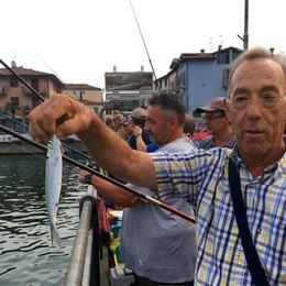 Sul Sebino è sardina-mania «Una stagione da incorniciare»