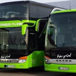La riscossa della «corriera» Bus low cost verso 130 città