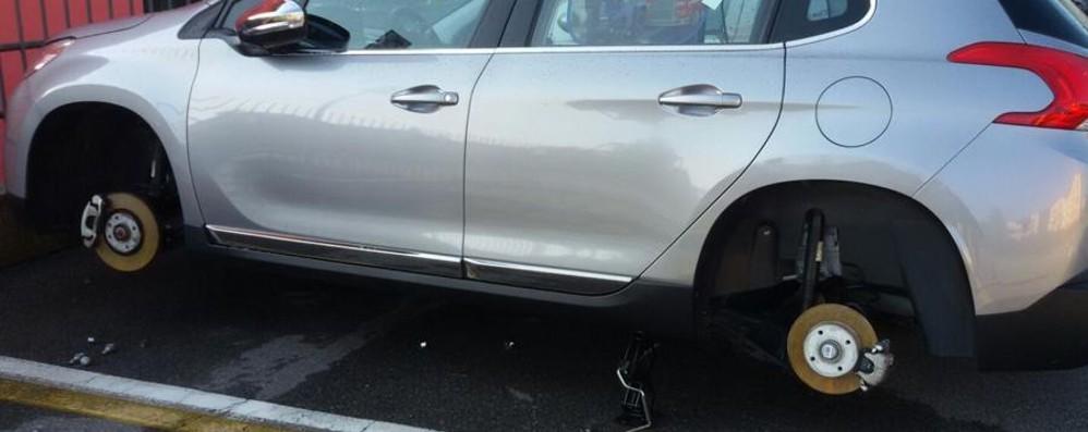 Le rubano le gomme dell'auto - Foto Il «grazie» di una donna incinta ai ladri