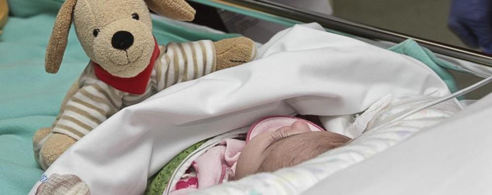 Bambini con insufficienza epatica  Bergamo, miglior tasso di sopravvivenza
