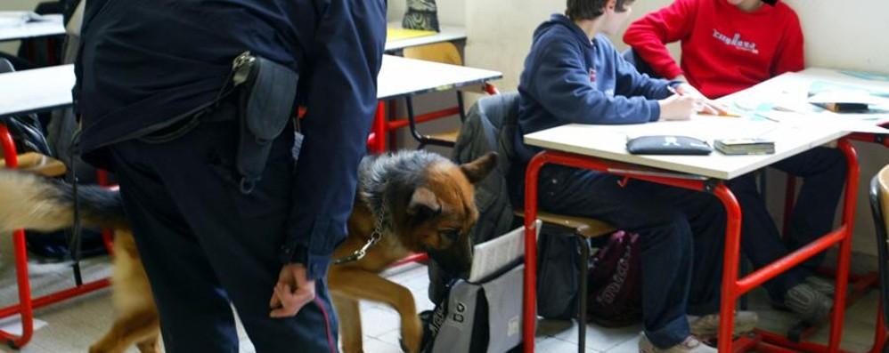 Proposta della consigliera Magoni «Test antidroga agli studenti a scuola»