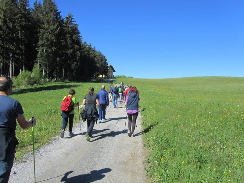 CORSI NORDIC WALKING