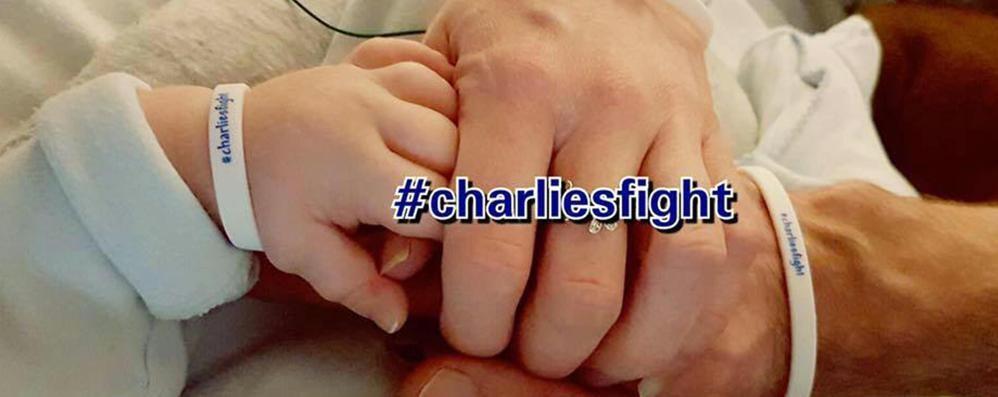 «La terapia per Charlie può funzionare»  Bambin Gesù invia  protocollo a Londra