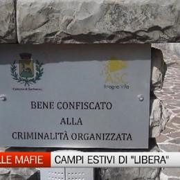 Contro le mafie, i campi estivi di Libera