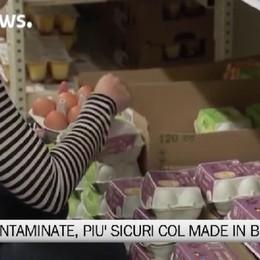 Uova, sicure quelle made in Bergamo   Come riconoscere i codici sul guscio