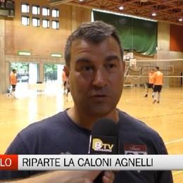Caloni Agnelli Bergamo, via al precampionato