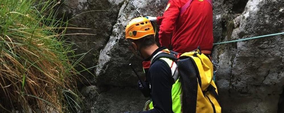 Cerca funghi e scivola in una scarpata Muore a Lecco 51enne di Verdellino