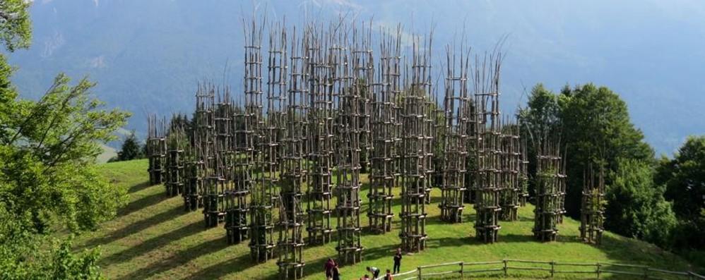 La meraviglia della Cattedrale vegetale Un video per ammirarla anche dall'alto