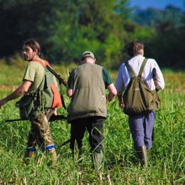 L'appello delle associazioni animaliste «Cacciatori, quest'anno non sparate»