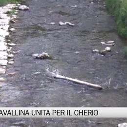 Trescore, la Val Cavallina unita per il Cherio
