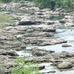 Emergenza fiume Serio, è in secca Rilascio straordinario d'acqua