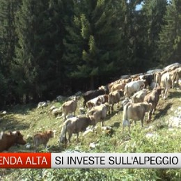 Oltressenda Alta, il Comune investe sull'alpeggio di Verzuda Bassa