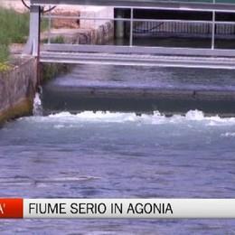 In attesa della pioggia, 100 mln di litri d'acqua nel Serio