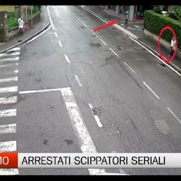 Arrestati due brasiliani, scippatori seriali