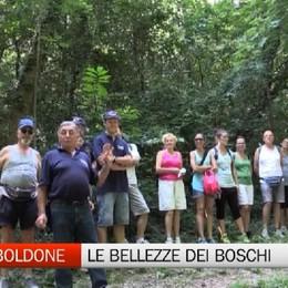 Torre Boldone, in mezzo ai boschi con la Protezione Civile
