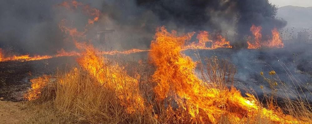 Incendi e siccità I moniti dell'estate