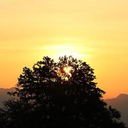 L'importanza della vitamina D Un po' col sole, un po' a tavola