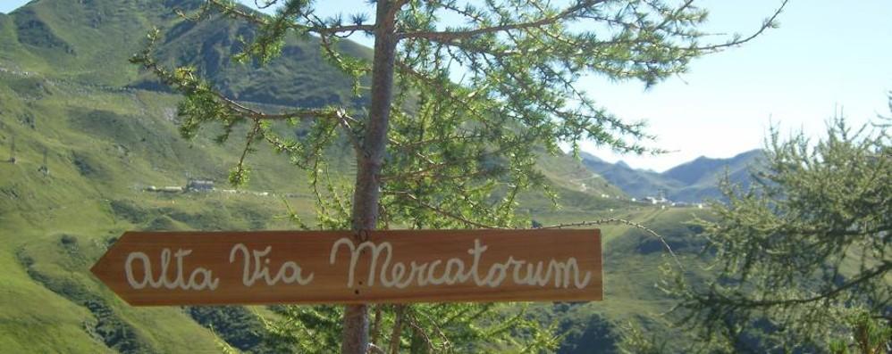 Andiamo a passeggio per la Via Mercatorum