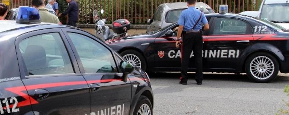 Morde agente e cerca di rubargli la pistola  Rocambolesco arresto a Ciserano