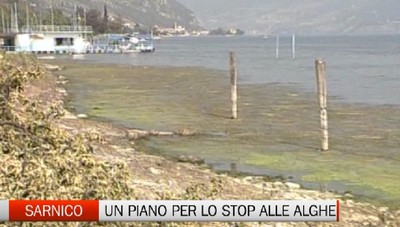 Sarnico - Stop alle alghe nel Sebino