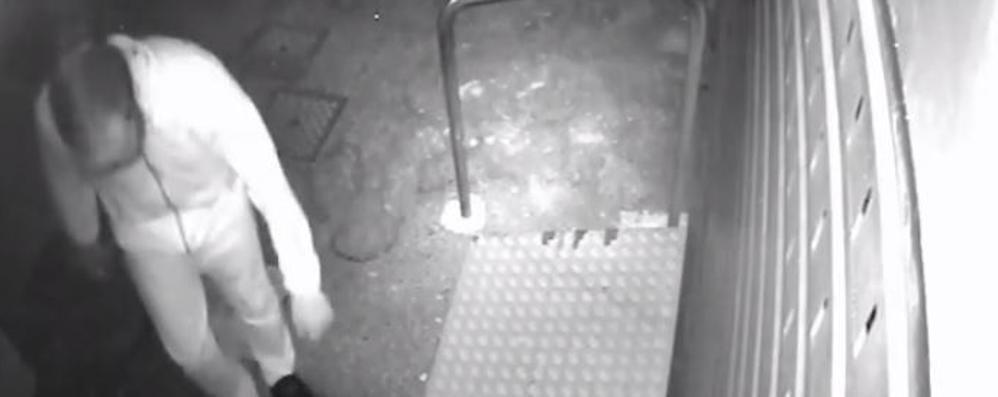 Cisano, tombe profanate. Video su Fb Appello del sindaco: «Chi lo riconosce?»