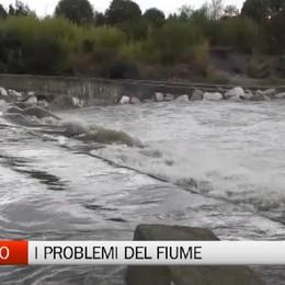 Brembo, gli scarichi abusivi e i problemi del fiume
