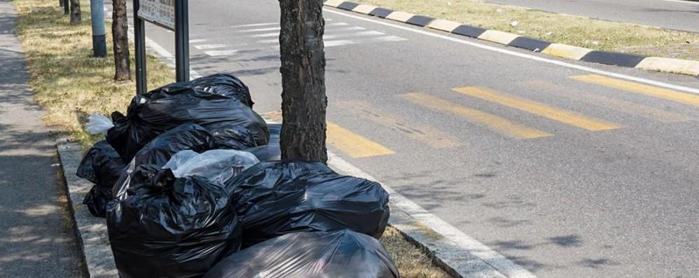Sacchetti abbandonati in strada Boom di multe: 115 euro la sanzione