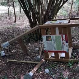 Vandali in azione a Medolago Danneggiato il bosco degli scoiattoli