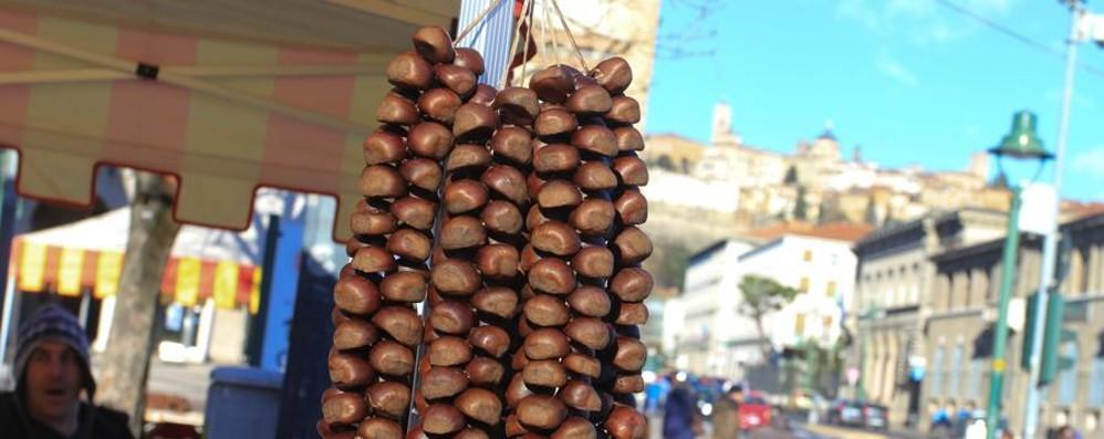 A Bergamo la festa di Sant'Antonio  Mercoledì arrivano i «biligòcc»