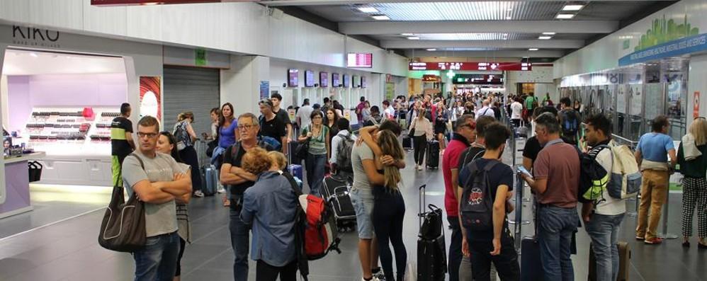 Orio,  12 milioni 300 mila  passeggeri Nuovo record, vola  il trasporto merci