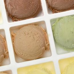 Pasqualina e Oasi American Bar tra le migliori  gelaterie italiane