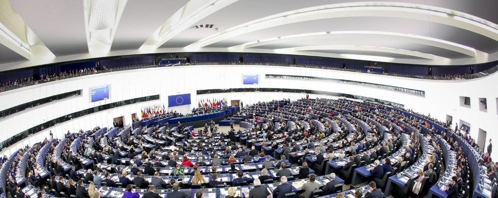 Una decina di eurodeputati pronti lasciare Bruxelles e candidarsi alle elezioni