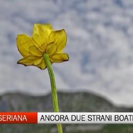 Boati in Valle Seriana, evento noto sotto osservazione