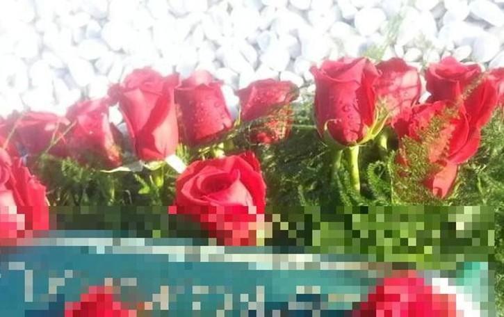 Rubano le rose sulla tomba della mamma Mozzo, il funerale solo tre giorni prima