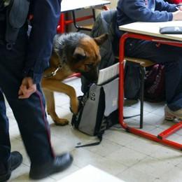Bassa, controlli antidroga nelle scuole Trovato 18enne con hashish in aula