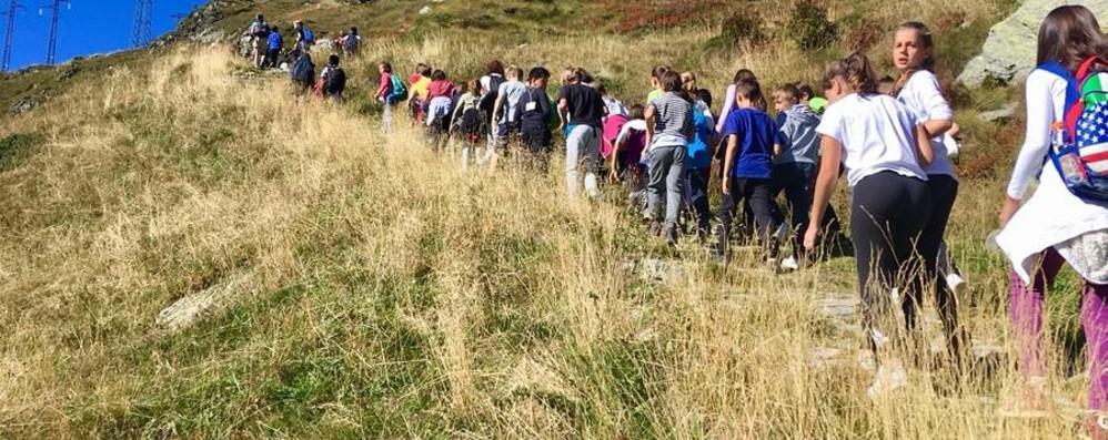 Bambini a lezione in alpeggio Sulle tracce dei bergamini