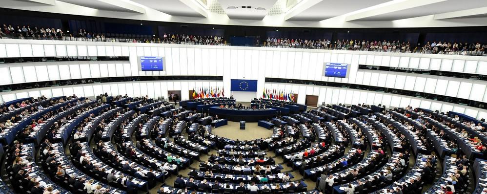 Europee: Verdi europei, comincia la mobilitazione comune