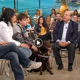 Lorenzo e il cane Red a «I Fatti Vostri» Insieme per vincere il diabete - Video