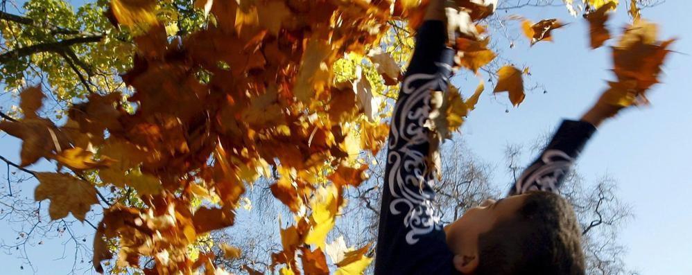 Il vento ha portato l'autunno Temperature al ribasso, niente pioggia