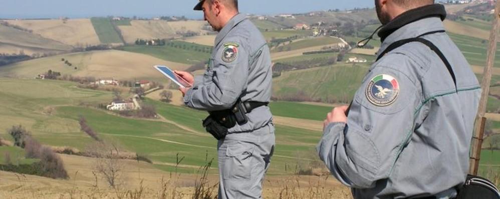 Azioni anti-bracconaggio, due denunciati Trovati 140 uccelli morti, persino pettirossi