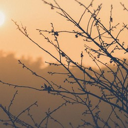 Mercoledì caldo anomalo, fino a 30° Colpa del riscaldamento globale?